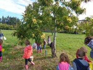 Education à l'environnement pour les enfants